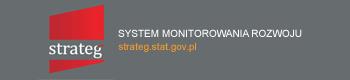 System Monitorowania Rozwoju